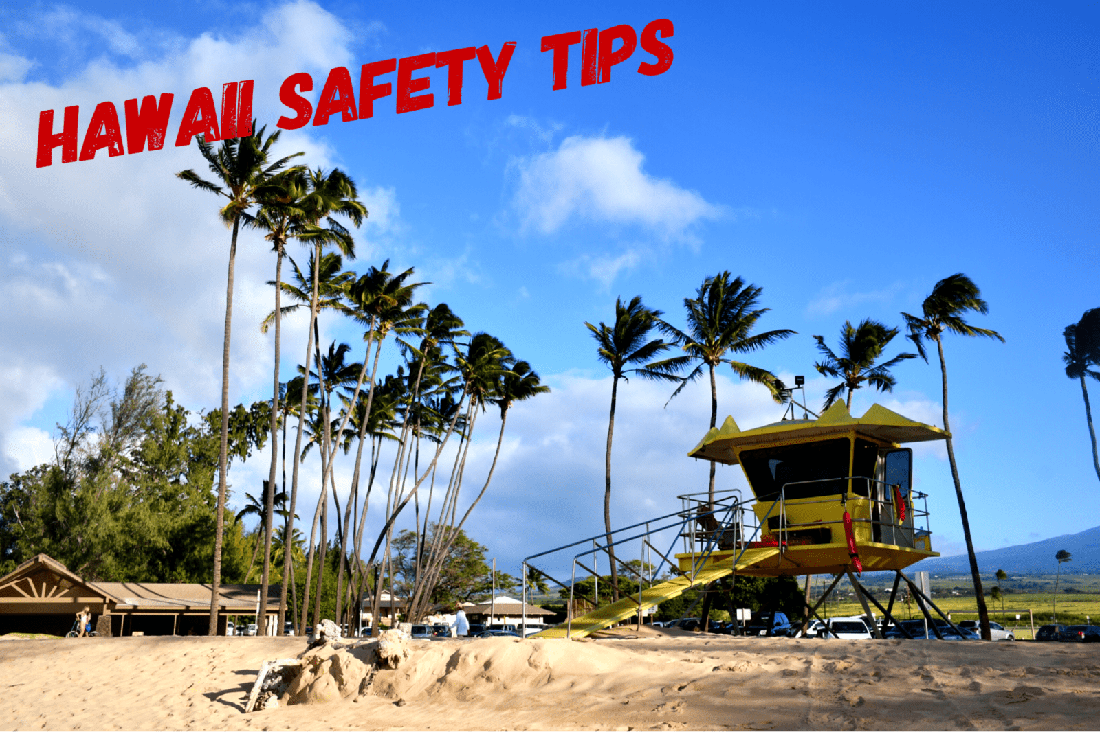 How to stay safe in Hawaii - The Discovery Nut