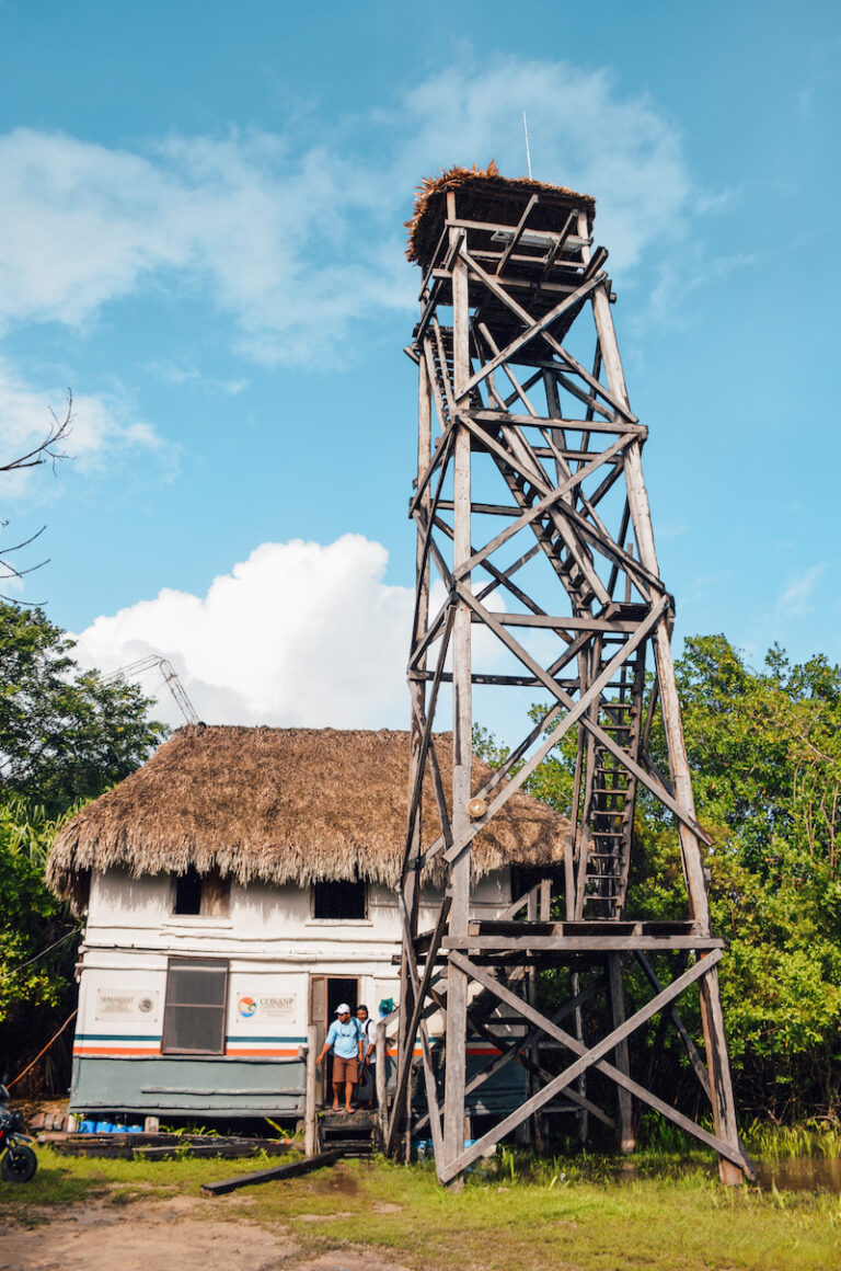 Why you should visit Muyil near Tulum