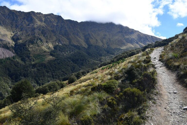 Ben Lomond Hike near Queenstown